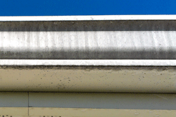 Tiger Stripes on Gutters